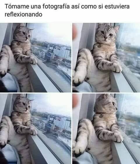 Meme_otros - Quiero parecer interesante
