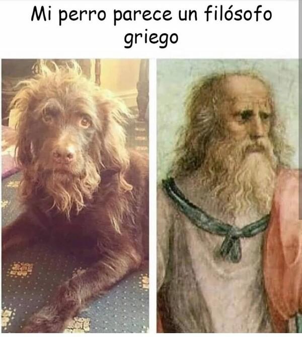 Meme_otros -