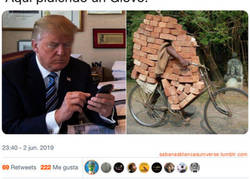 Enlace a Donald Brick Trump