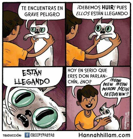 Otros - Miau miau miau muerte miau