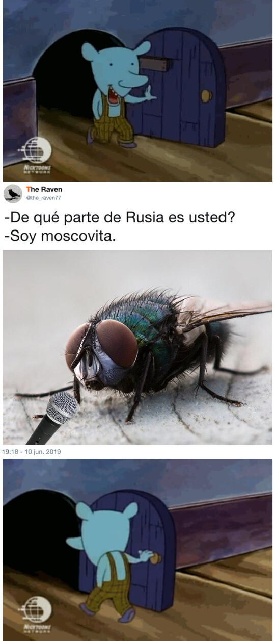 Meme_otros - Moscovita