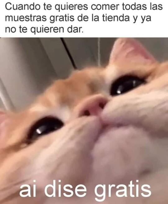 Meme_otros - G.R.A.T.I.S ¿Oíste?