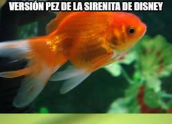 Enlace a Si la sirenita fuera un pez así sería antes y así es ahora...