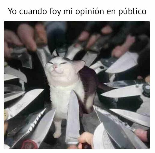 Meme_otros - Opinar en público es deporte de riesgo