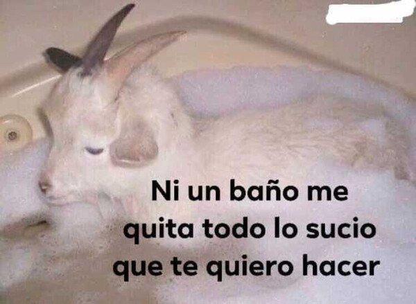 Meme_otros - Susio