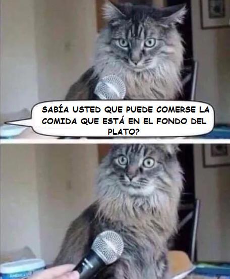 Meme_otros - ¡¿QUÉ?!