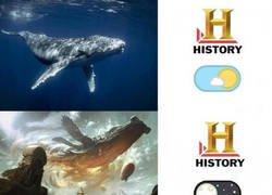 Enlace a Canal historia, modo día vs modo noche