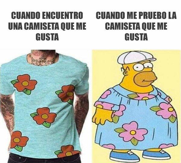 Meme_otros - Modelo vs me
