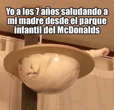 Meme_otros - ¡5 minutos más, mama!