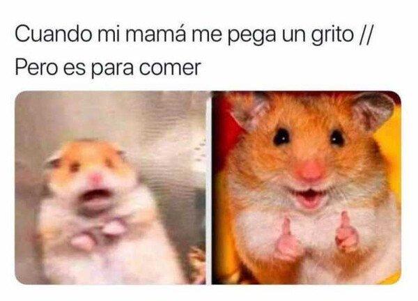 Meme_otros - Un grito de una madre es peor que un aviso de terremoto