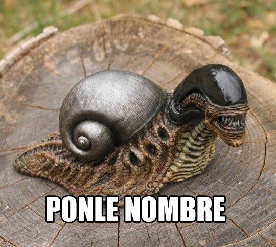 Meme_otros - Aliencol