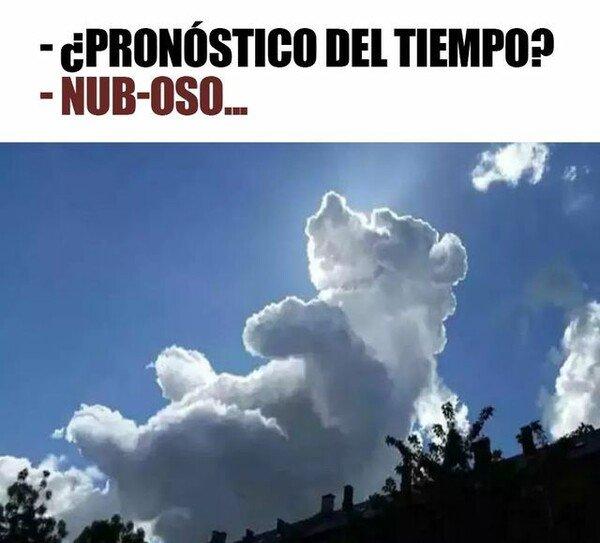 Meme_otros - Se ha quedado un día nub oso