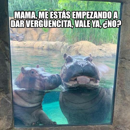 Meme_otros - CRINGE