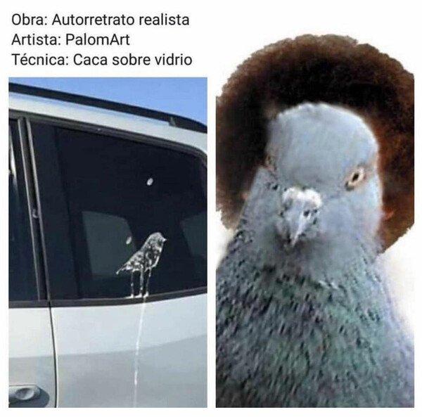 Meme_otros - Caca sobre vidrio