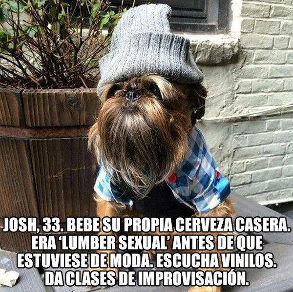 Meme_otros - Creo que podría hacer 'match' con María José, la intensita
