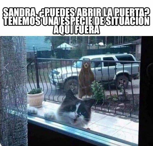 Meme_otros - Sandra, por favor te lo pido, abre la maldita puerta