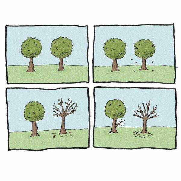 Otros - Estúpido y sensual árbol