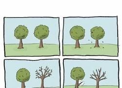 Enlace a Estúpido y sensual árbol