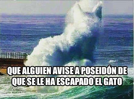Meme_otros - Poseidón, ¡cierra el mar que se escapa el gato!