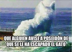 Enlace a Poseidón, ¡cierra el mar que se escapa el gato!