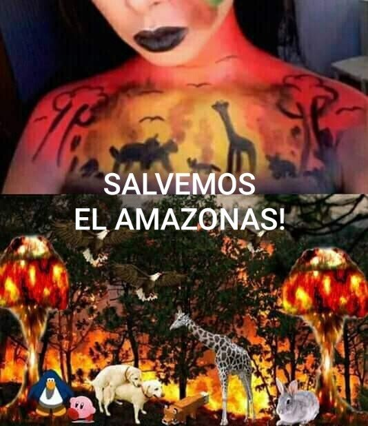 Meme_otros - Je suis Amazonas