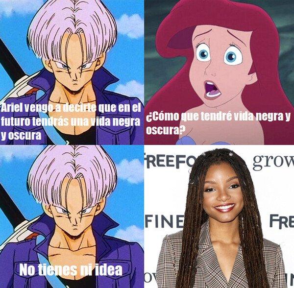 Meme_otros - El futuro negro de Ariel