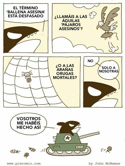 Otros - Ballenas asesinas