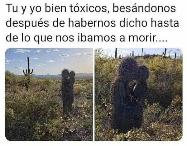 Meme_otros - Círculo tóxico