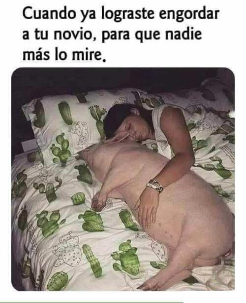 Meme_otros - Puerquito mio...