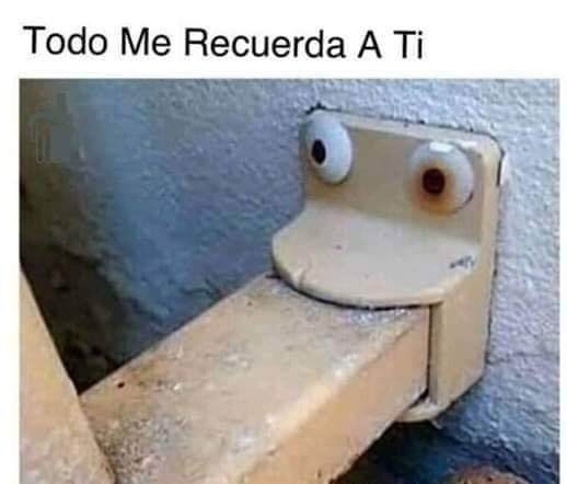 Meme_otros - Hasta la mirada