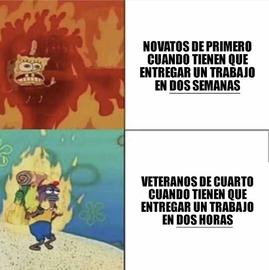 Meme_otros - Novatos vs vateranos