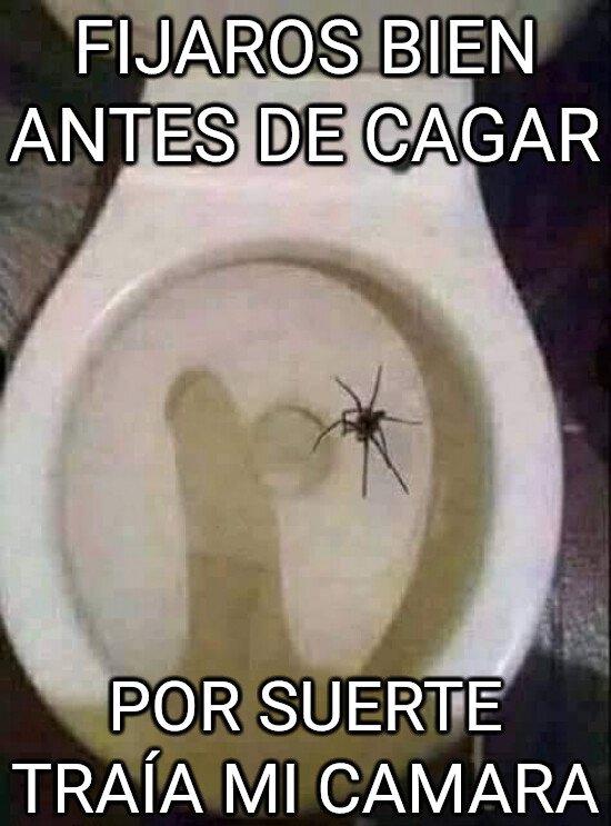 Meme_otros - Peligros en el baño