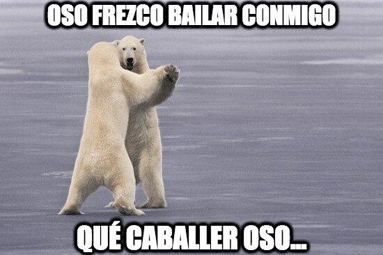 Oso_confesiones - El baile del oso