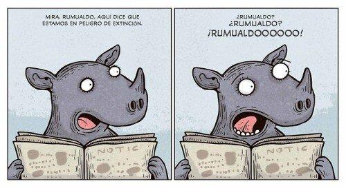 Meme_otros - Rumualdo no está, Rumualdo se fue
