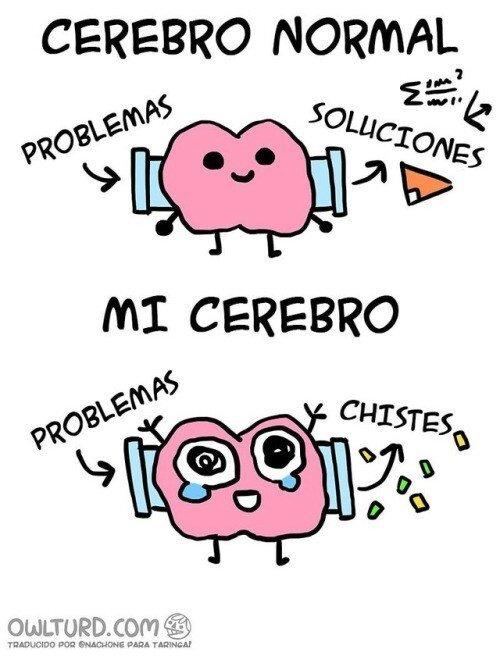Meme_otros - Así funciona mi cerebro