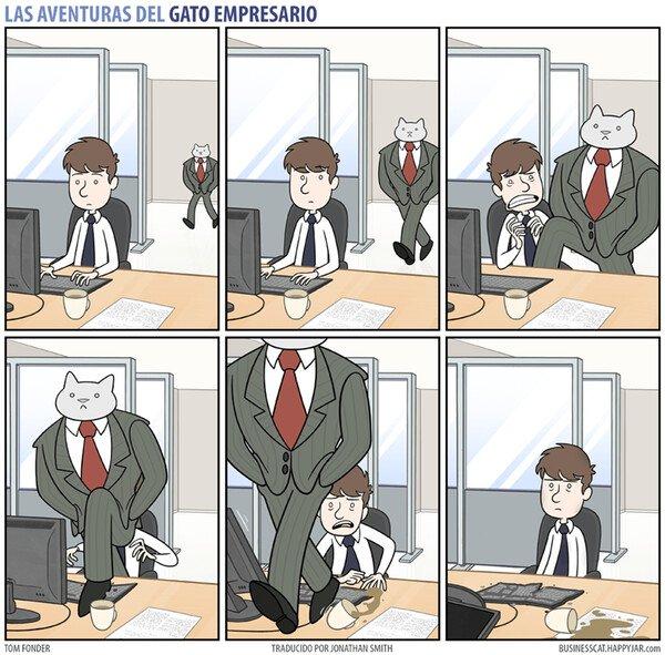 Meme_otros - Por muy empresario que sea, no deja de ser un gato
