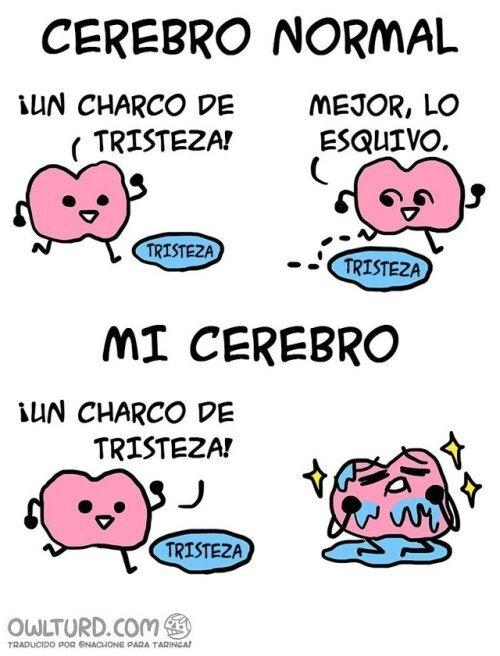 Meme_otros - A mi cerebro le encanta bañarse en tristeza