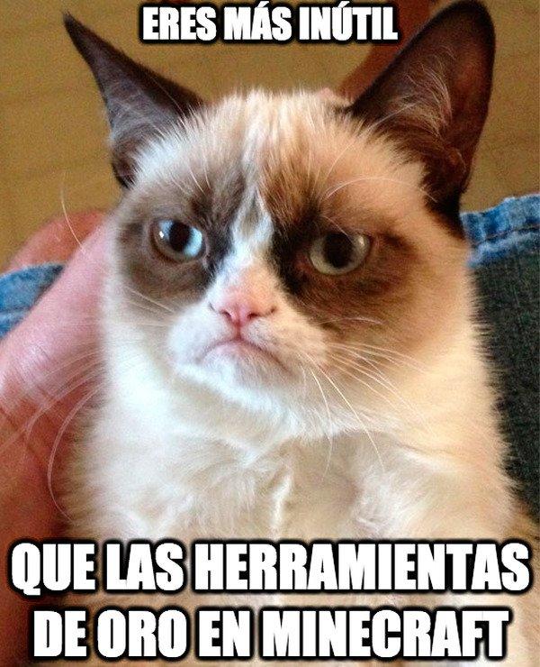 Grumpy_cat - Inútil