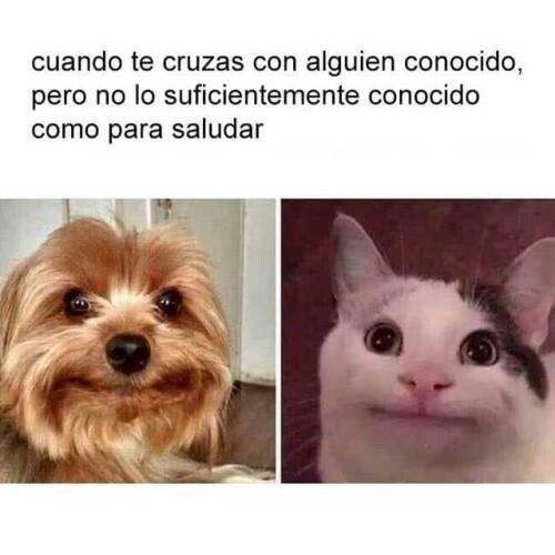 Meme_otros - Esa media sonrisa incómoda