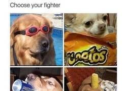 Enlace a Escoge tu personaje