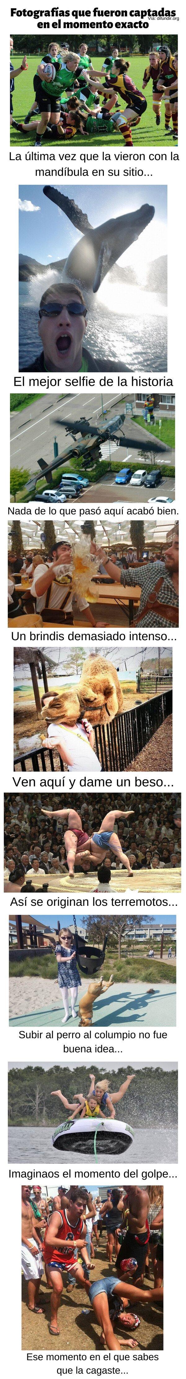 Meme_otros - Fotografías que fueron captadas en el momento exacto