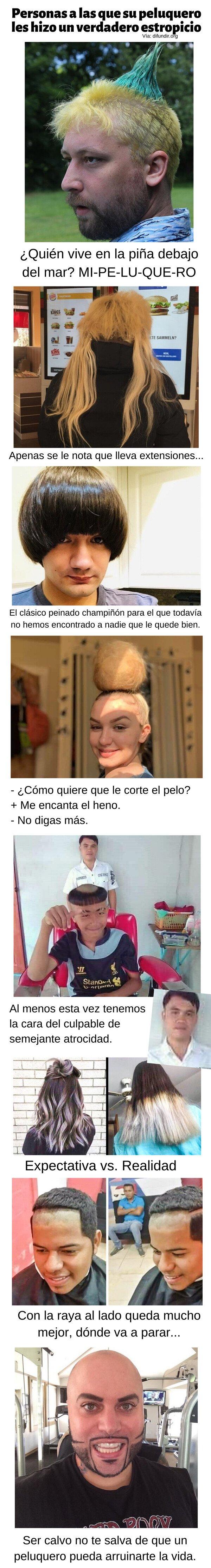 Meme_otros - Personas a las que su peluquero hizo un verdadero estropicio
