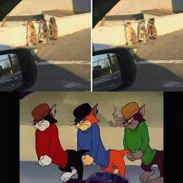 Meme_otros - ¡Son ellos!
