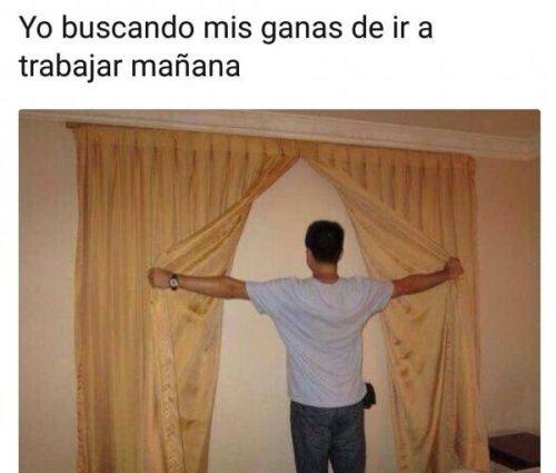 Meme_otros - Me gusta contemplarlas tras las cortinas