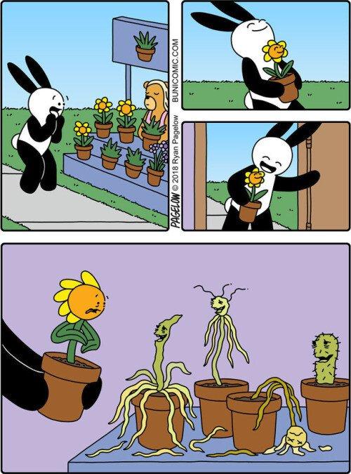 Meme_otros - No sé que tiene de bonito comprar flores