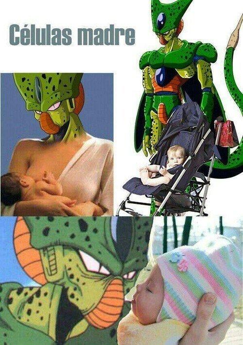Meme_otros - La tontería del día