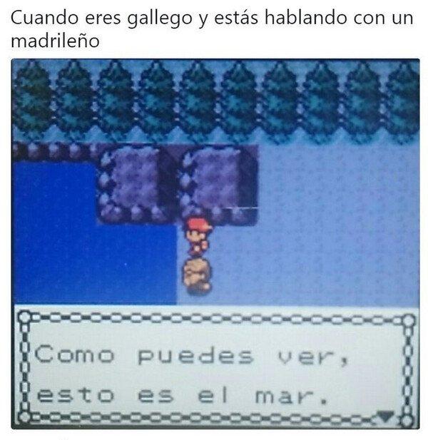 gallego,madrileño,mar,pokémon