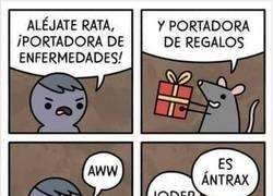 Enlace a Las ratas nunca portan nada bueno