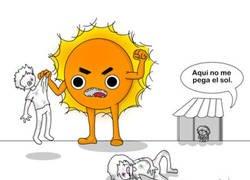 Enlace a Días de Sol agresivo