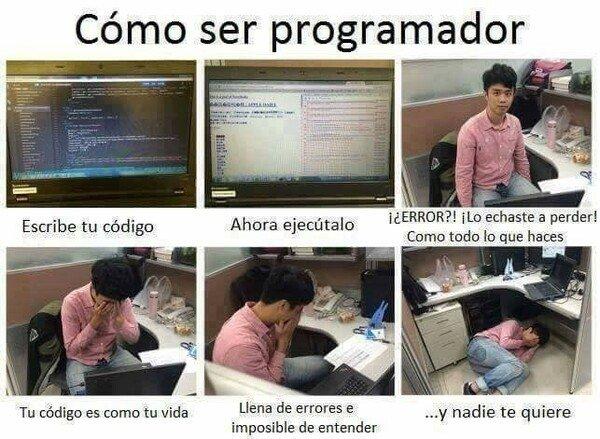 Otros - La gratificante vida del programador